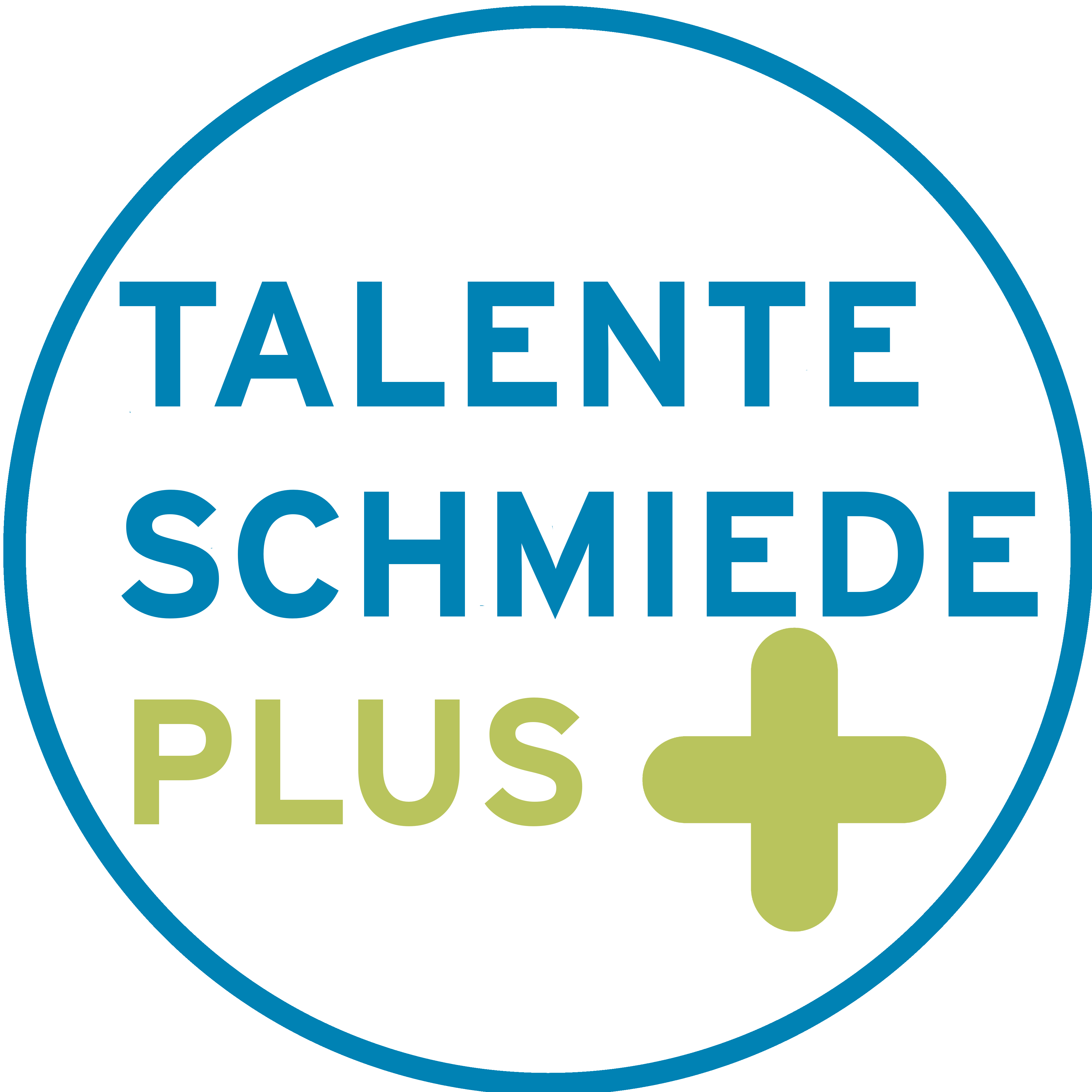 Talenteschmiede Plus